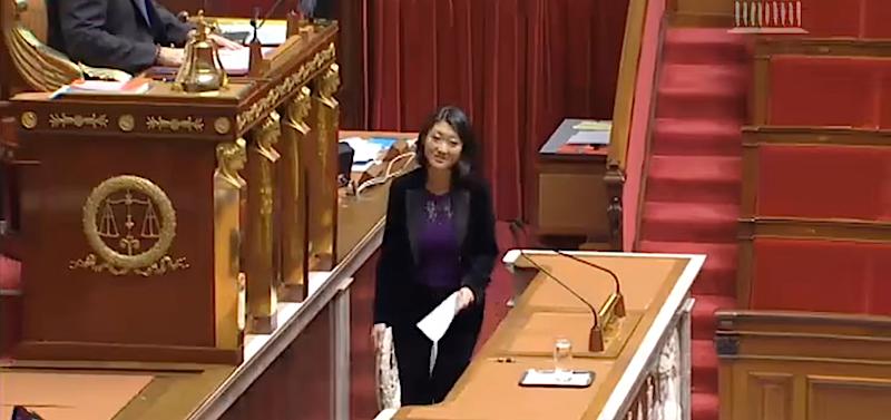 Fleur Pellerin, ministre de la Culture et de la Communication devant l'Assemblée nationale le 17 décembre 2014